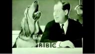 Century of Self BBC Documentary
